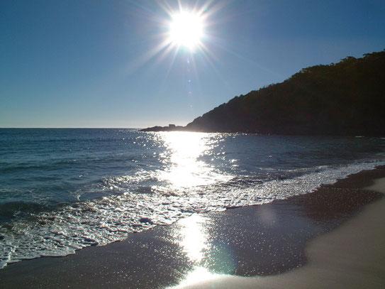 Na het ontbijt een ochtendwandeling op het strand bij Pacific Palms. Met de opkomende zon genieten van de rust en het geluid van de zee.
