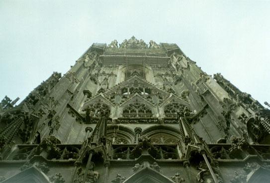 De Sint Stephan's Kathedraal op het gelijknamige plein midden in het centrum van Wenen is zeker een bezoekje waard.