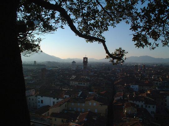 Een van de torens in de stad is opengesteld voor het publiek. Deze biedt een wonderschoon uitzicht over het stadje zelf.