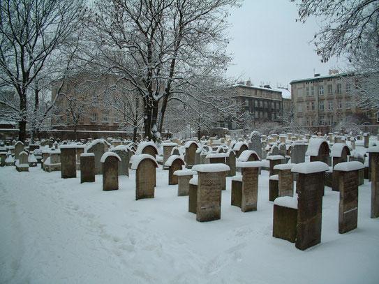 Het kleine begraafplaatsje achter de Remuhsynagoge. Deze Joodse begraafplaats (en één in Praag) is de enigste uit de middel-eeuwen die Europa nog bezit.