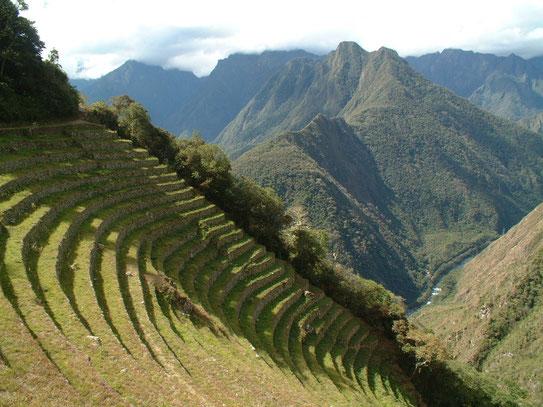 Tijdens de twee-daagse Incatrail kwamen we onderweg langs de stad Winay Wayna. Erg indrukwekkend zo'n stad midden in de Andes.