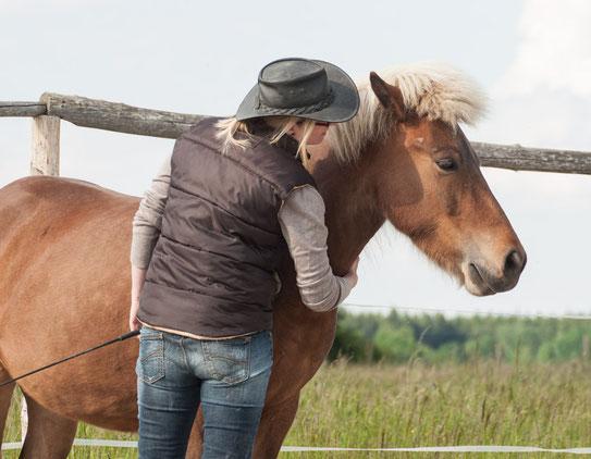 Pferdeseminar, Kurse mit Pferden, Persönlichkeitsentwicklung, Bewusstseinsentwicklung, Bewusstsein, Coaching