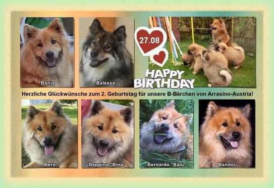 27.08.2016: unsere B-Bärchen sind 2 Jahre - Happy Birthday!!!