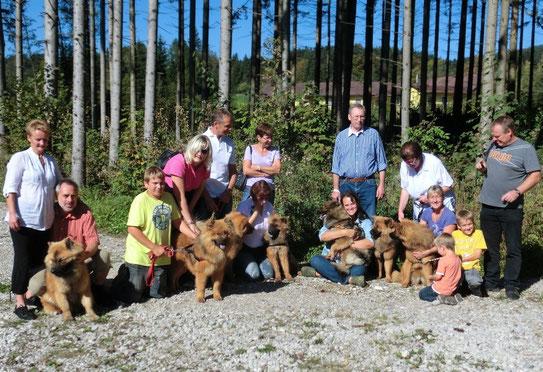1. Arrasino A-Wurftreffen im Oktober 2011 (mit Mama Ylvi und allen 6 Kindern)