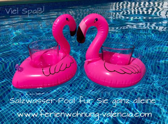 Psst, nicht weitersagen: Ferienwohnung Valencia mit Salzwasser-Pool zur alleinigen Nutzung