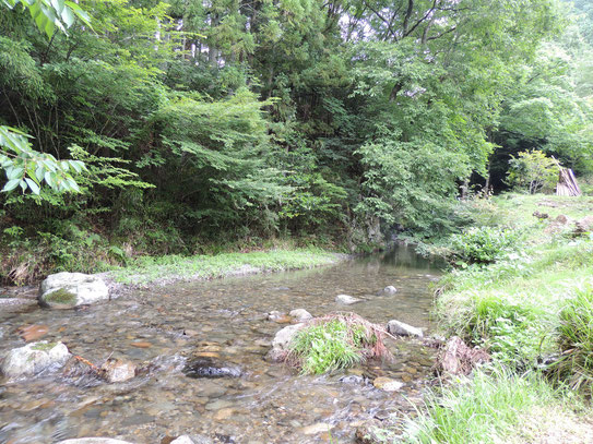 谷川のせせらぎに耳を傾けてのランチと、気の置け無い友達とのこの時間、リフレッシュできました。