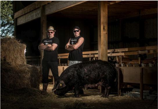 Porcs Gascons Maurin à Arros 64400- Un élevage comme on les aime, cependant il faudra respecter la loi sur l'eau !
