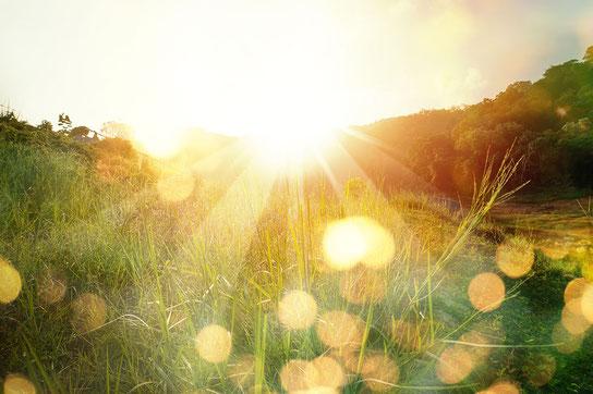 Sonnenlicht wirkt positiv bei Multipler Sklerose
