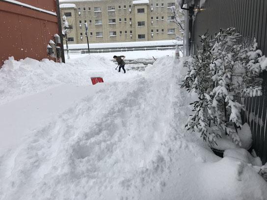 ひたすら雪かき