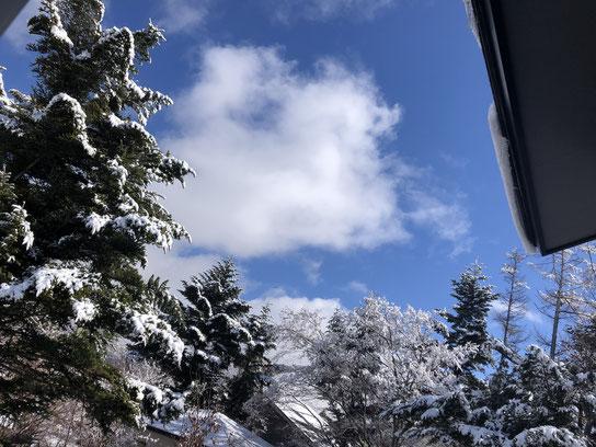 きらきらひかる雪と青空に、犬のようにテンションが上がる。