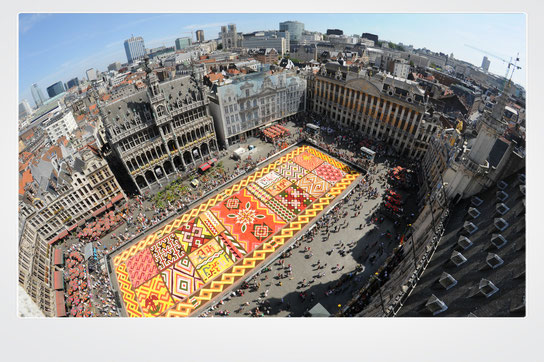Brussels, Belgium, top destinations, Flower carpet, Tapis de Fleur, Europe