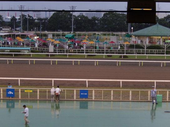大井競馬場 スタンドから見た内馬場