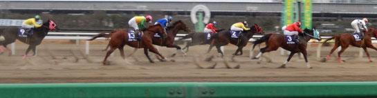 ゴール前の馬たちは夢の世界への案内人