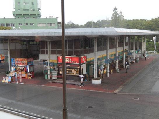 大井競馬場、グルメ、築地銀だこ、浜松餃子