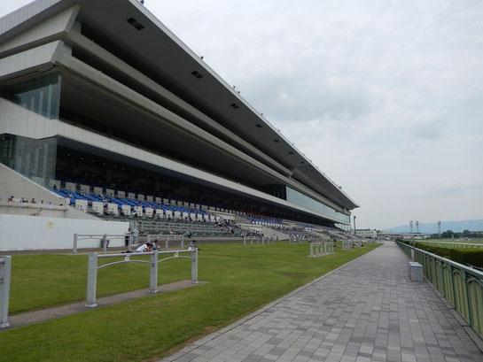 京都競馬場 直線前 芝生ゾーン
