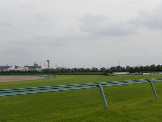 阪神競馬場 内回りコース 4コーナー