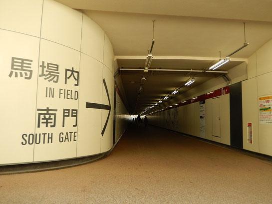 東京競馬場,内馬場への通路