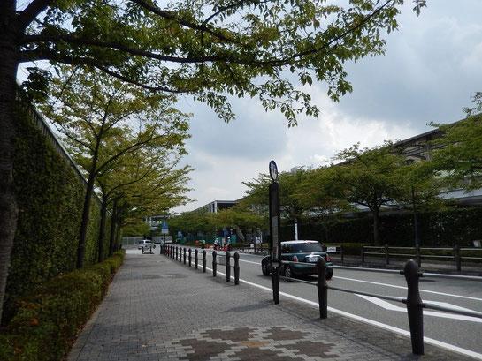 阪神競馬場 駐車場前の道路