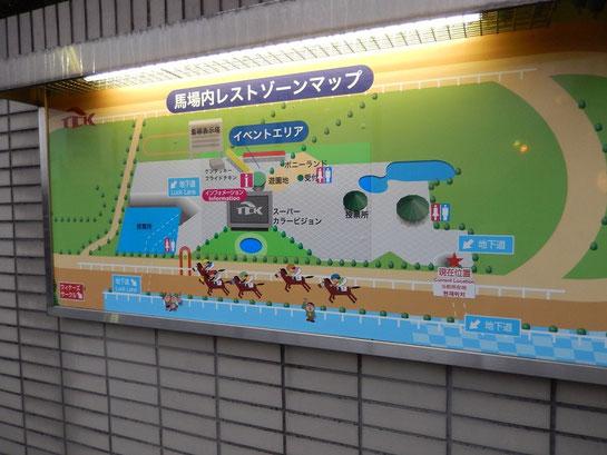 大井競馬場 馬場内レストゾーンマップ