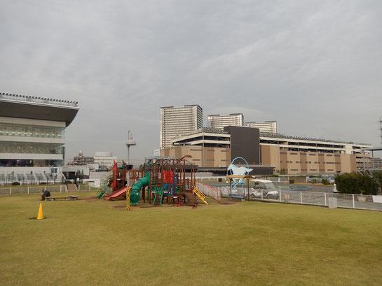 川崎競馬場 芝生広場