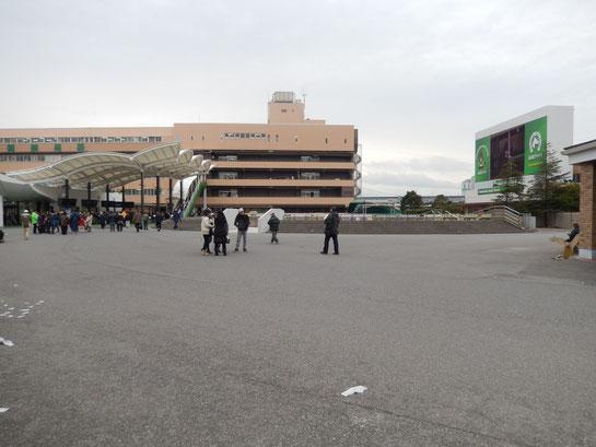 船橋競馬場,場内2