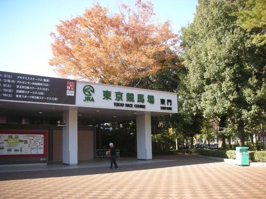 東京競馬場東門