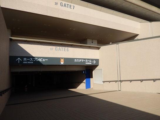東京競馬場,ホースプレビュー