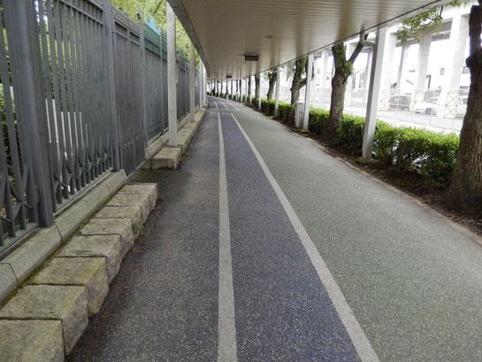 京都競馬場 駐車場からシンザンゲートを経て正面入口へ
