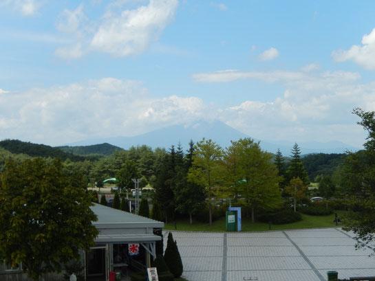 盛岡競馬場,岩手山