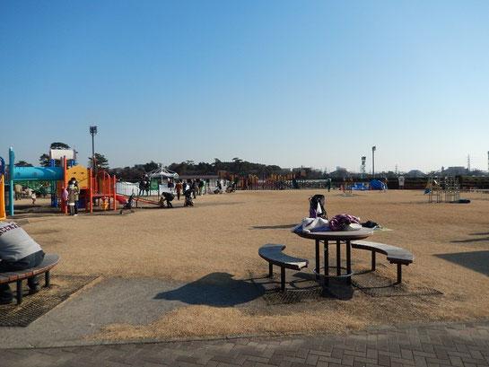 中山競馬場,内馬場,公園