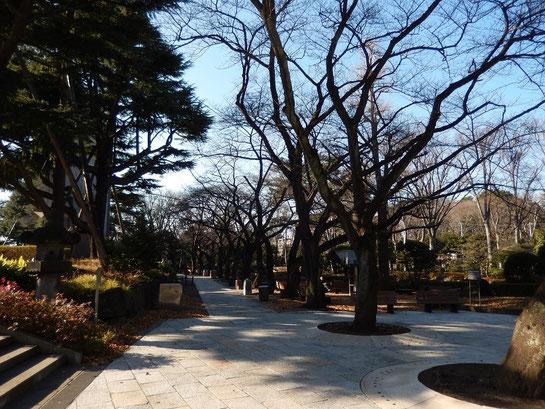 東京競馬場,日本庭園,概観