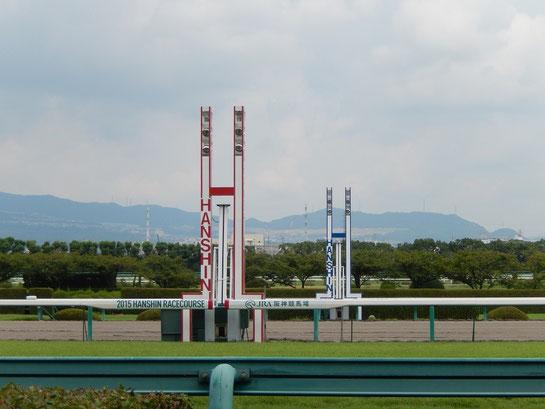 阪神競馬場 ゴール前