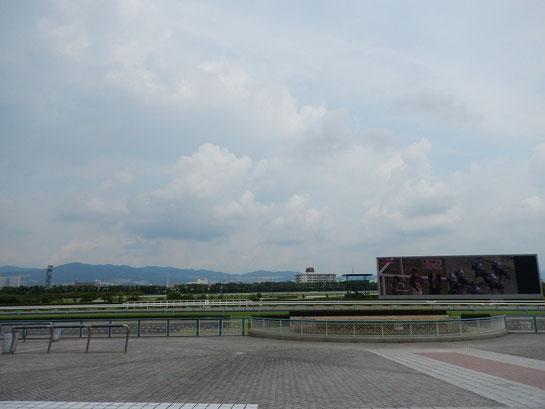 阪神競馬場 モニター 奥には向こう正面