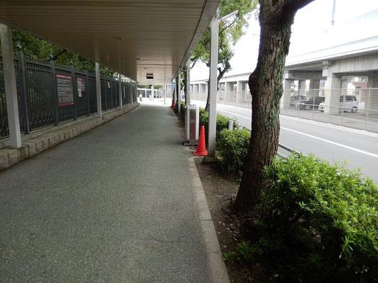 京都競馬場 駐車場から競馬場への道