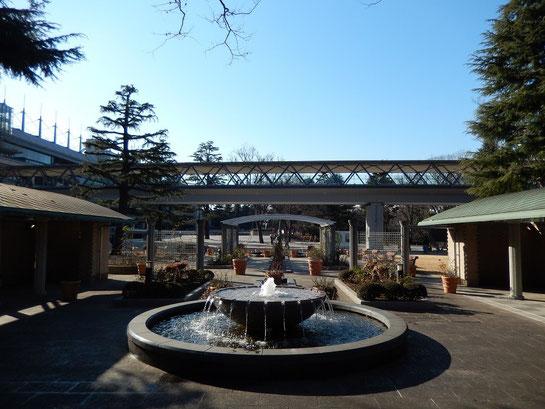 東京競馬場,ローズガーデン