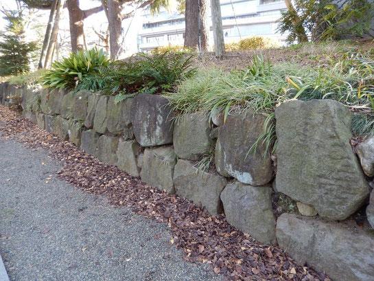 東京競馬場,日本庭園,石垣