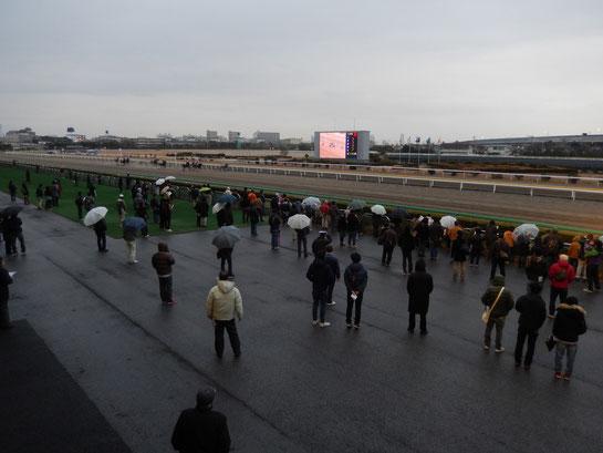 船橋競馬場,レースコース