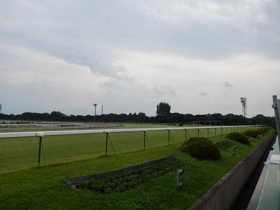 京都競馬場 4コーナーとその奥