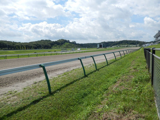 盛岡競馬場 レースコース ゴール前の直線
