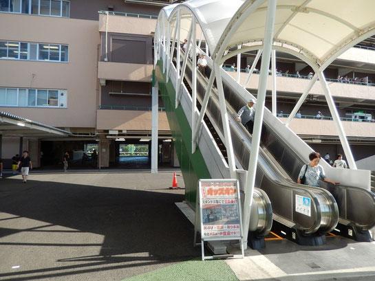 船橋競馬場、場内散歩、オッズオンに続くエスカレーター