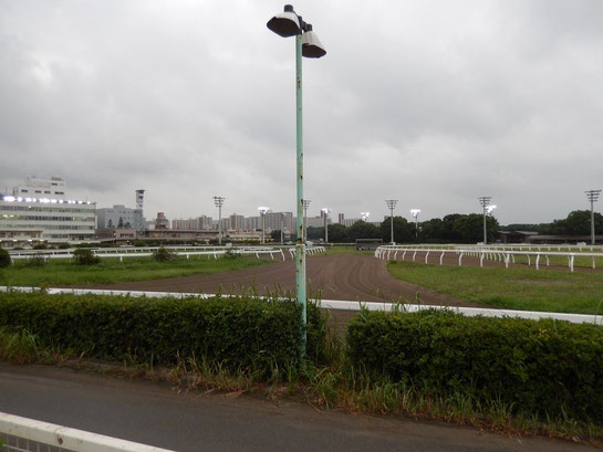 大井競馬場 内馬場 左端