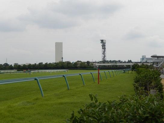 阪神競馬場 外回りコース 4コーナー
