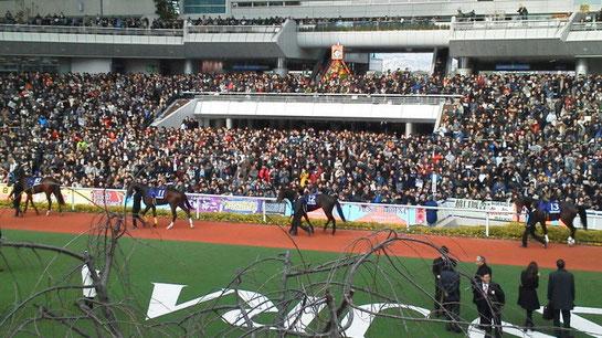 阪神競馬場 大賑わいのパドック