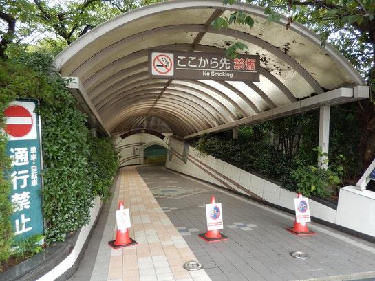 京都競馬場 地下道