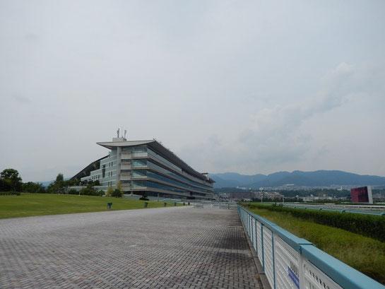 阪神競馬場 屋外 4コーナー側