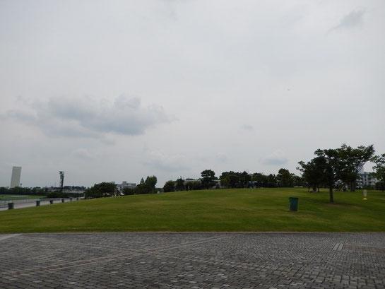 阪神競馬場 4コーナー 芝生 丘