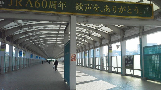 阪神競馬場 サンライトウォーク