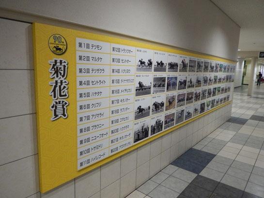 菊花賞 歴代勝ち馬 パネル