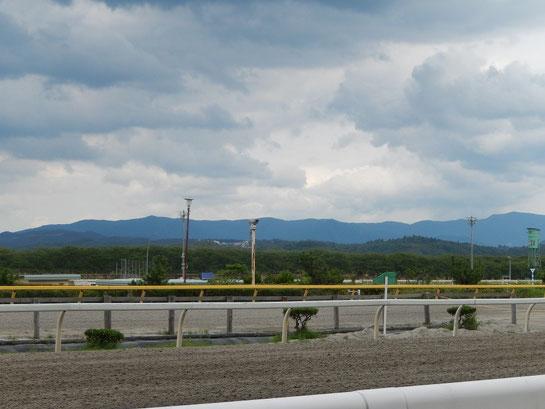 水沢競馬場,レースコース概要その3