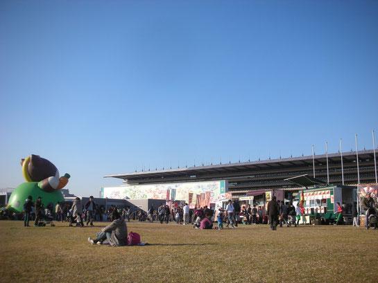 内馬場,芝生の広場